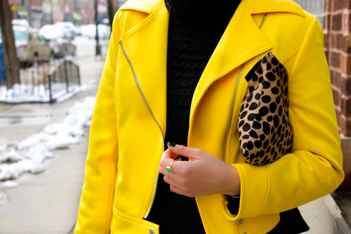 Yellow-Jacket